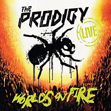 Review of World's on Fire