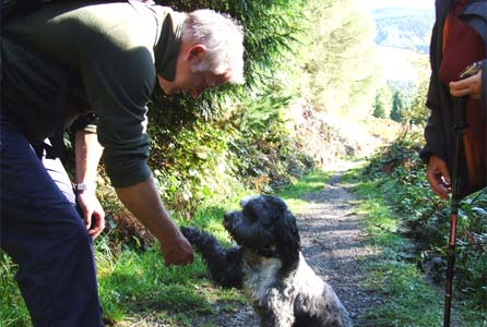 Derek shakes hands with a dog in the Rhondda
