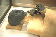 Image of Tuthmosis III's mummified body