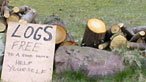 Sign for Logs for sale