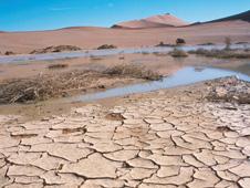 BBC - GCSE Bitesize: Desertification