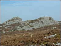 Outcrops on the Stiperstones