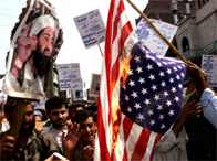 Protesters waving pictures of Osama bin Laden burn an American flag