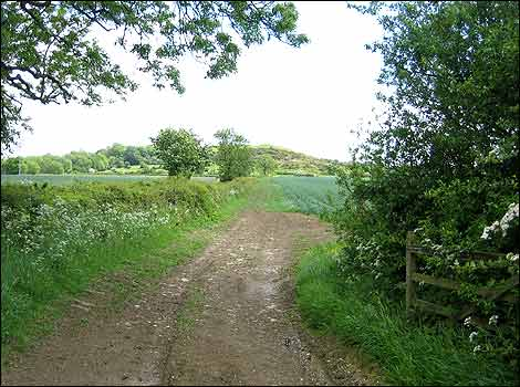 16 - A view heading towards Burrough Hill - Photo by Chris Baxter
