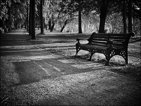 Lonely Black And White Lonely by Chris Kimmett
