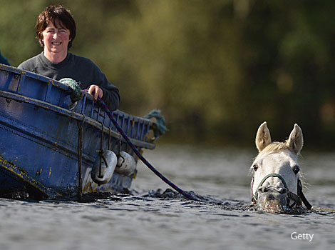 Susan Gell exercises her horse in Loch Lomand, Scotland