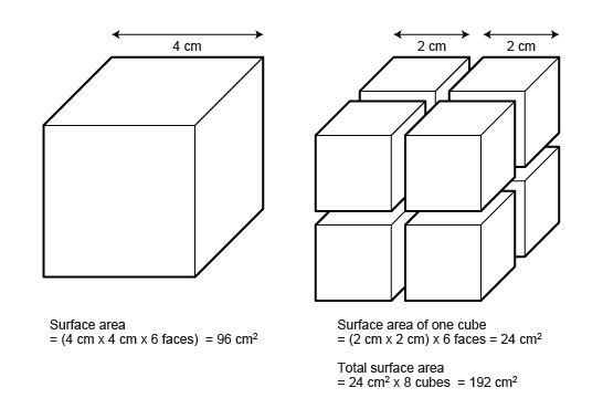 C Program to Calculate Volume and Total Surface Area of Cuboid