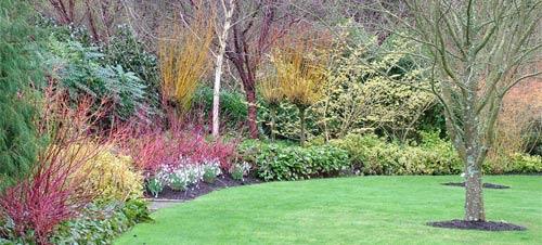 Merveilleux RHS Garden Rosemoor
