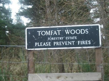 Tomfat Woods