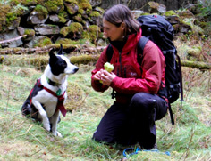 Search dog sitting beside its handler