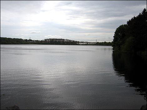 05 - Swithland Reservoir - Photo By Chris Baxter