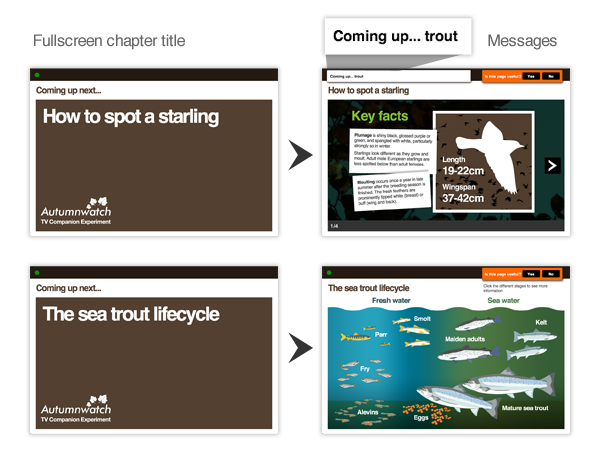 The sequence from chapter title to content with message to the next chapter title.