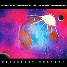 Review of Planetary Unknown