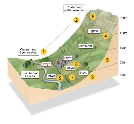Diagram of a farm layout next to a hill
