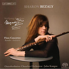 Review of Flute Concertos