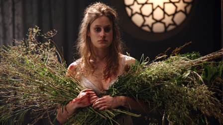 critical essays on hamlet and ophelia In william shakespeare's hamlet, many questions are raised as to whether or not hamlet is really in love with ophelia although there is much evidence arguing that.