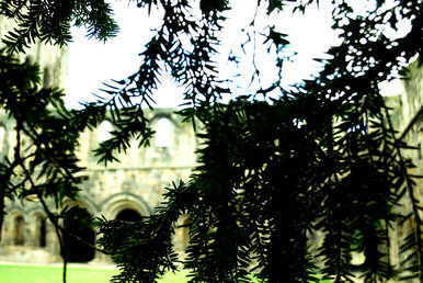 Kirkstall Abbey 1