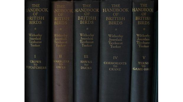 Handbook of Brit Birds : Harry Witherby