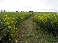 Stage Three: A field near Frisby on the Wreake take by Chris Baxter