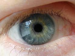 Biometric devices could identify you from your iris
