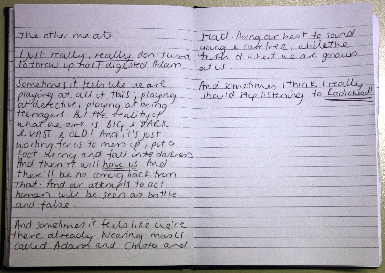 Bloodhound Diary Entry Page 3