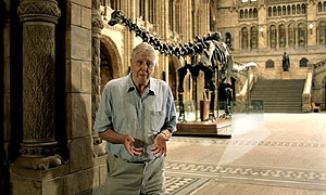 Sir David Attenborough appears in the BBC iPlayer campaign