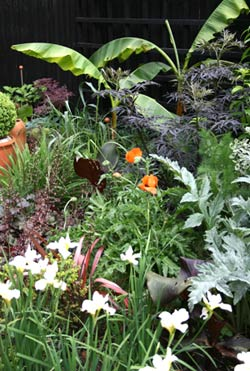 Kevin Smith's 'low-maintenance' garden