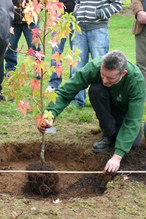 BBC - Gardening Blog: Choosing and Planting Trees