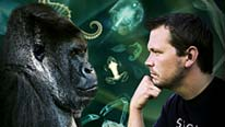 Jimmy Doherty facing a gorilla