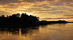 The Amazon river at dusk