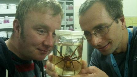 Adam, Julian Carter and a Huntsman Spider from South America