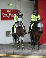 Police horses at Luton Bus Station