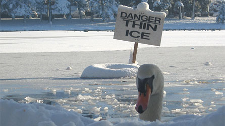 A danger sign for thin ice. Image by Jo Bird