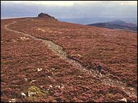 The ridge of the Stiperstones