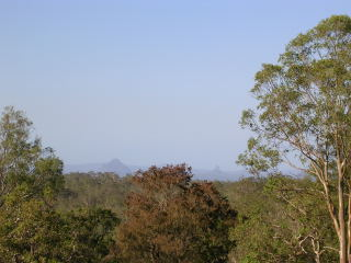 View from the garden - if you look into the distance, you can just see the Glasshouse Mountains
