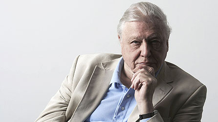 David Attenborough in Uncovering Our Earliest Ancestor: The Link (image: Atlantic Productions Ltd)