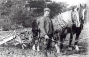 Old black and white photograph of a 19th Century ploughman and horse drawn plough