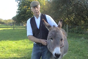 John set up a sanctuary for mistreated donkeys in the 1980s.