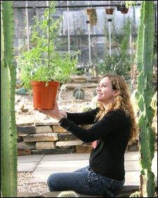 Graciela Rocha y una planta de menta
