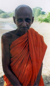 Buddhist monk in Sri Lanka wearing orange robe