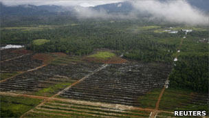 Land being cleared in Indonesia
