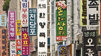 Useful facts about the Korean language in Korean