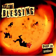 Review of Bugs In Amber