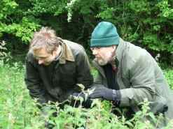 Lionel Kelleway, Trevor Beebe and Paul Harmes in search of the Great Silver Water Beetle.