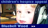 Bluebell Wood: raising money for a children's hospice
