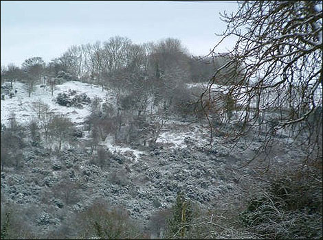 snow in Huish Champflower