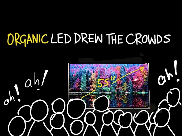 Organic LED was a hit at IFA 2012