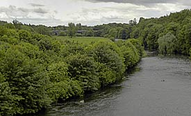 River Maine, Randalstown  looking south