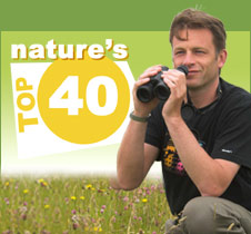 Contact Nature's Top 40