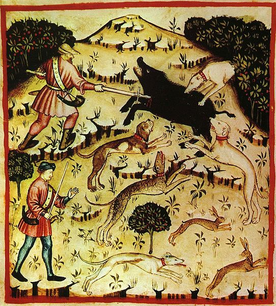 Depiction of boar hunting in the 14th Century